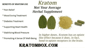 Top 20 Health Benefits Of Kratom