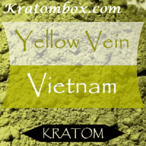 Yellow Vietnam Kratom – Everything You Want To Know About the New Strain