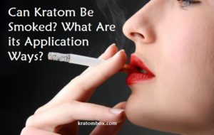 Can Kratom Be Smoked? What Are its Application Ways?