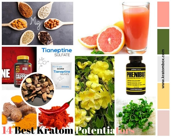 Kratom Potentiators - 14 Best Way To Potentiate Kratom Power