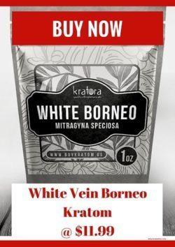 Buy White Vein Borneo Kratom