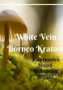 White Vein Borneo Kratom – Impressive Mood-Enhancing Strain