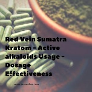 What is Red Vein Sumatra Kratom?
