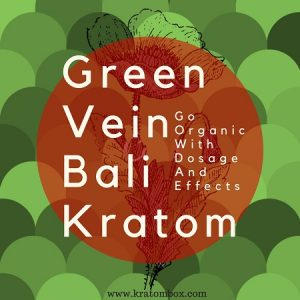 Go Organic With Green Vein Bali Kratom