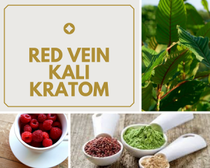 Benefits Of Red Vein Kali Kratom.