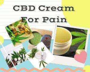CBD Cream For Pain – The Organic Pain Relief