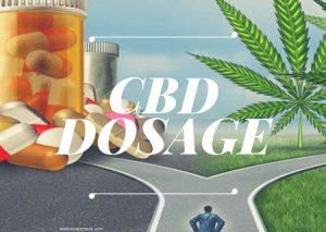 CBD Dosage – Determining CBD : THC Ratio