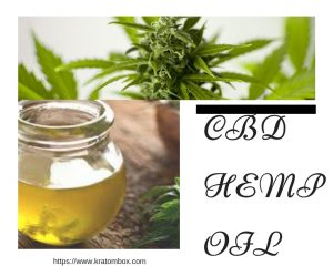 CBD Hemp Oil – What It Does For You?