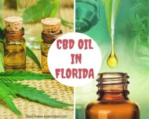 CBD Oil In Florida – Get An MMJ Card To Reap Its Benefits