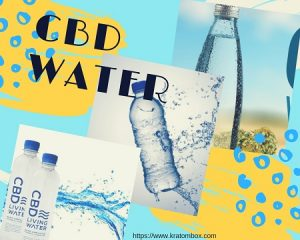 CBD Water – Tasty And Clean Water