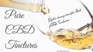 Pure CBD Tinctures