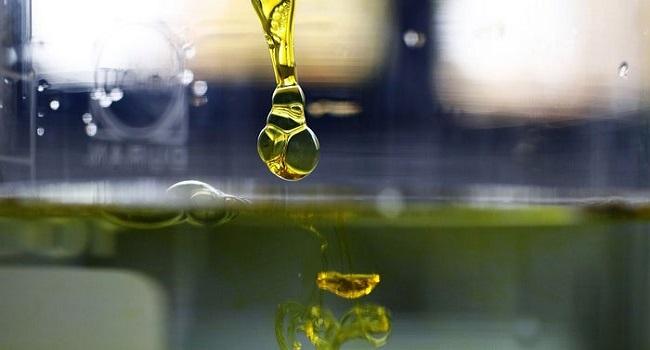Effects of CBD oil