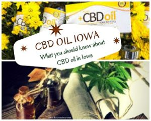 CBD OIL IOWA