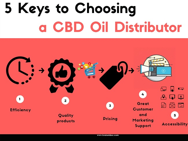 CBD Distributors - Key Factors You Must Consider