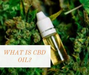 Cracking The What Is Cbd Oil Secret.